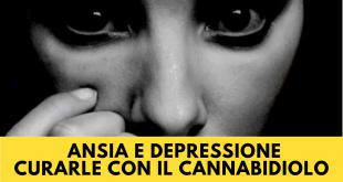 Ansia e Depressione Curarle con il Cannabidiolo